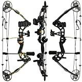 RAPTOR Compound Hunting Bow Kit: LIMBS MADE IN USA | Fully adjustable 24.5-31'...
