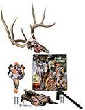 Mountain Mike's Reproductions Skull Master Antler Mounting...