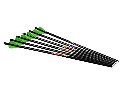 Excalibur Diablo 18in. Carbon Arrows